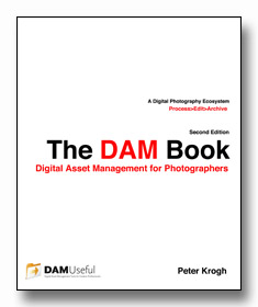 DAM_Book_Cover_Digital2